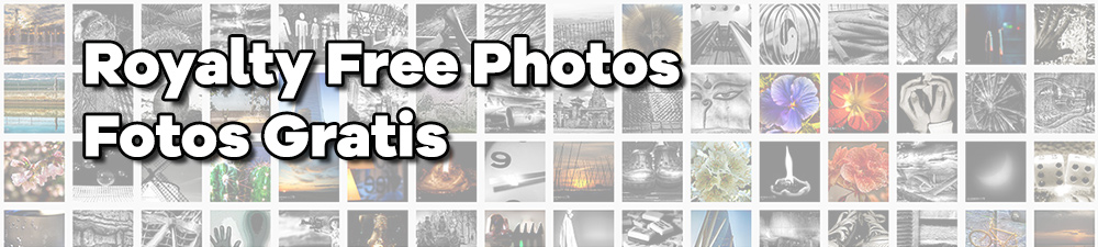 Royalty Free Photos | Fotos Gratis