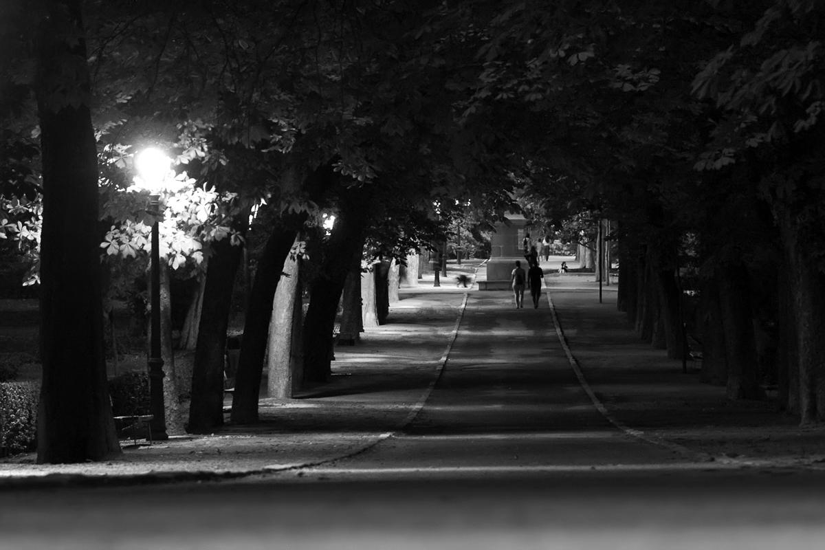 Paseos nocturnos por El Retiro. Street Photography